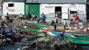 Migingo adasi 6 evdenhaberler