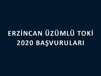 Erzincan Üzümlü Toki 2020 başvuruları nereye yapılacak? 100 bin sosyal konut başvuru şartları neler? 2+1 ve 3+1 daire fiyatları ne kadar?
